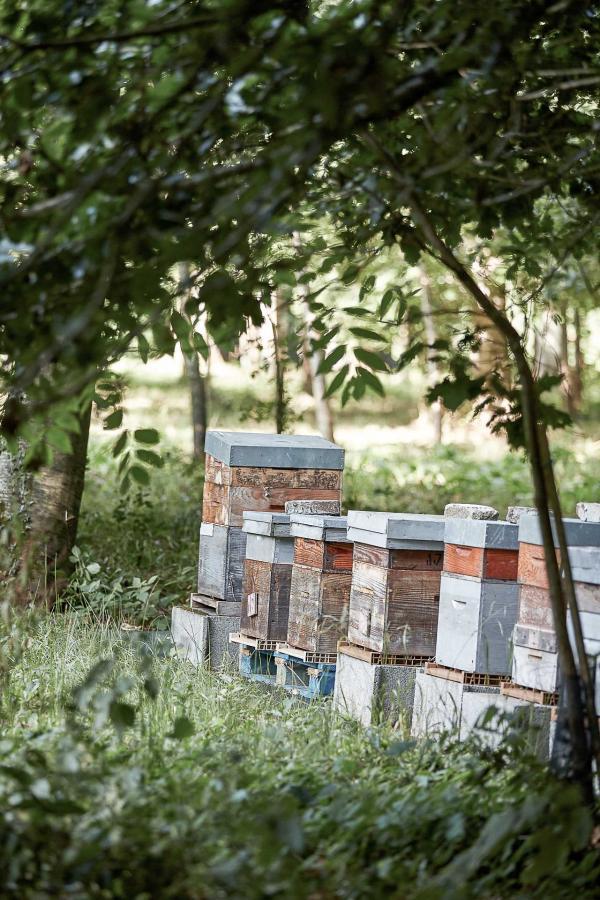 Le Château d'Audrieu produit son propre miel grâce à ses ruches © DR