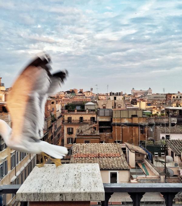 Coucher de soleil sur Rome depuis le rooftop © Yonder.fr