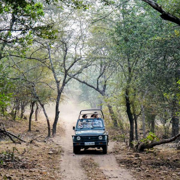 Safari en jeep dans le parc © YONDER.fr