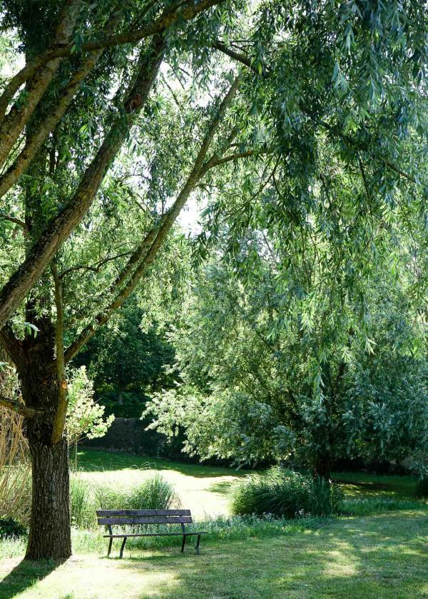Dans le parc de l'Hôtel Château du Grand-Lucé © YONDER.fr