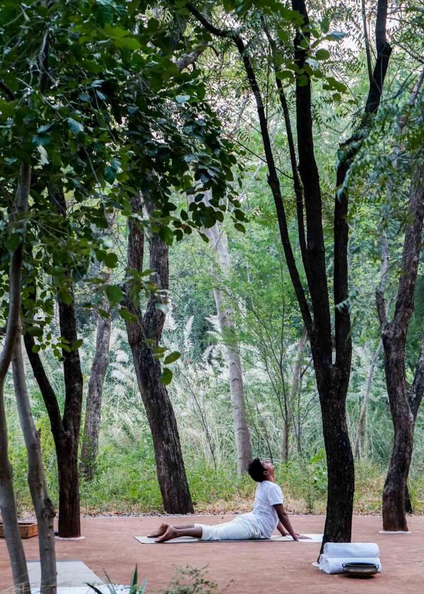 Séance de yoga au milieu des arbres © YONDER.fr