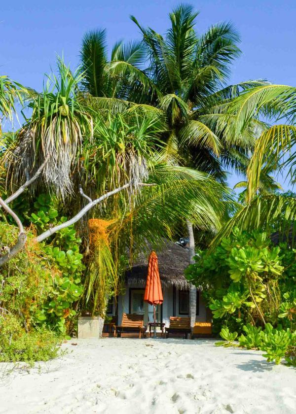 Chaque villa surest entourée d'une épaisse végétation © Pierre Gunther