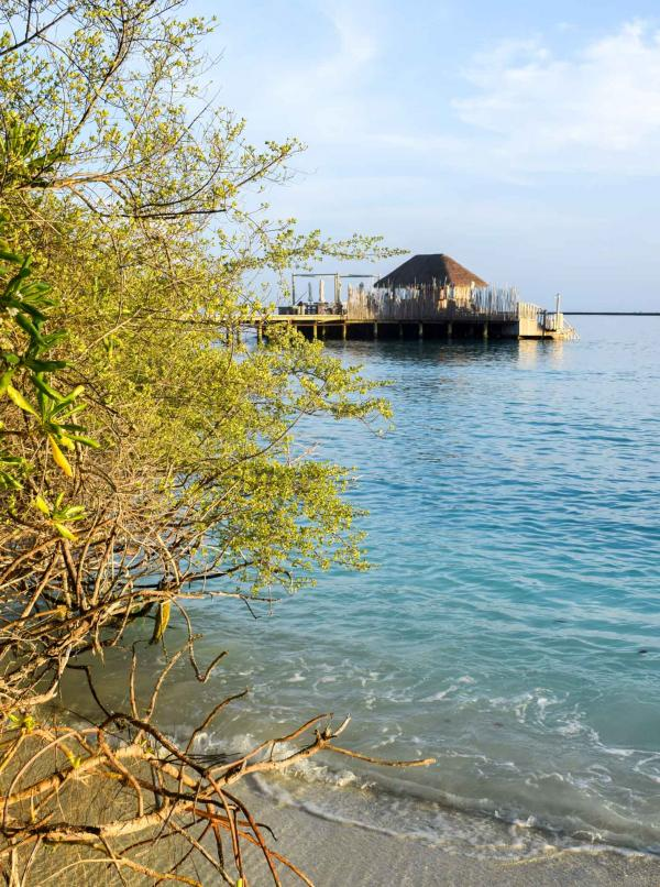 Le Bar(A) Bara, posé sur l'eau, vu depuis la plage © YONDER.fr