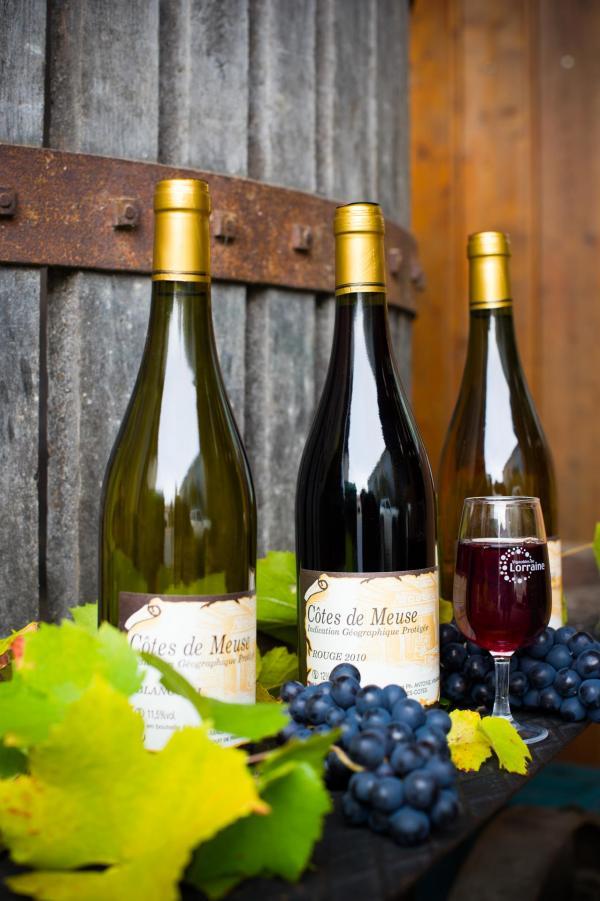 Vins des Côtes de Meuse © Guillaume Ramon