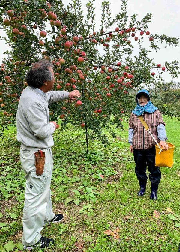Les propriétaires sont aux petits soins avec les familles qui viennent cueillir des pommes sur leur terrain.