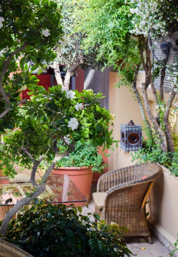 Sur le toit de l'hôtel, une charmante terrasse où il fait bon petit-déjeuner © YONDER.fr