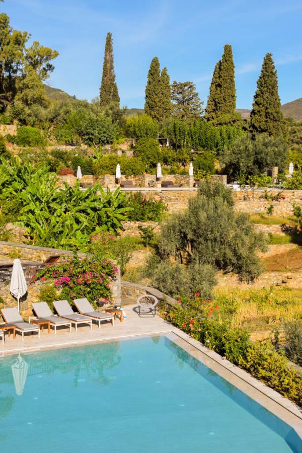 La piscine, au milieu des oliviers et autres arbres du domaine © MB | YONDER.fr