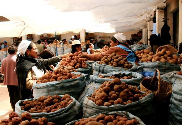 Mercado de Sucre © Carlos Adampol Galindo