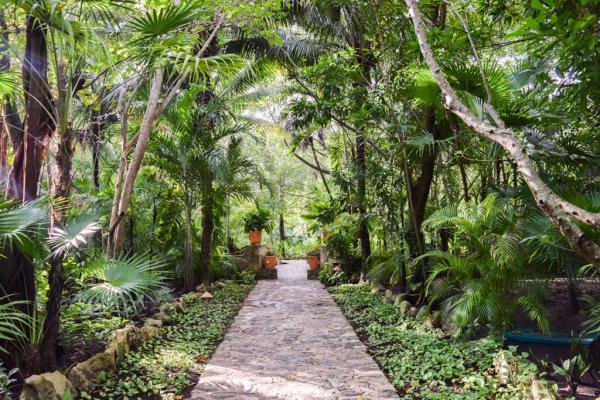 L'une des allées du resort, en pleine végétation © Yonder.fr