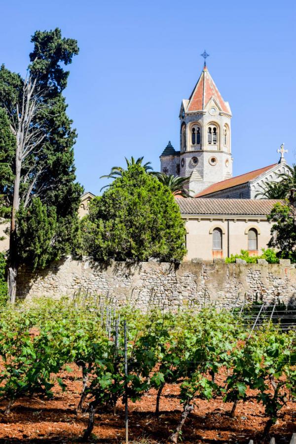 L'Abbaye de Lérins et les vignes de l'Île Saint-Honorat © Yonder.fr