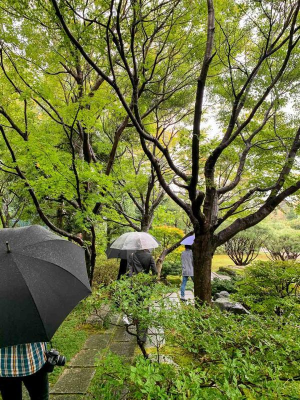 Promenade parmi les abres à Ōmihachiman. © Pierre Gunther