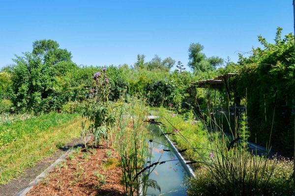 Le jardin aux 200 espèces d'herbes aromatiques, légumes et fruits © Pierre Gunther