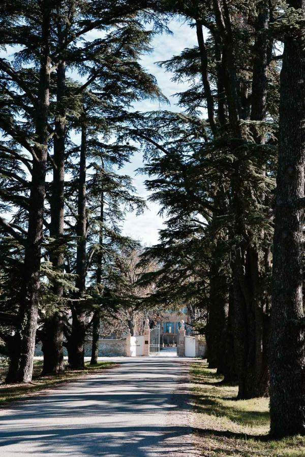 Les allées majestueuses du parc du château de Fonscolombe © Emmanuel Laveran