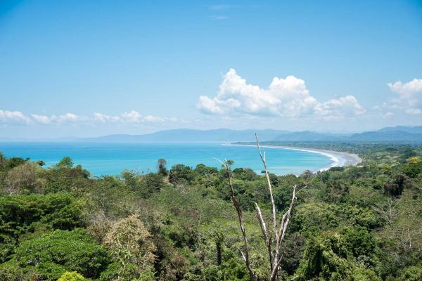 La vue imprenable sur l'océan Pacifique au Tiskita Jungle Lodge © DR