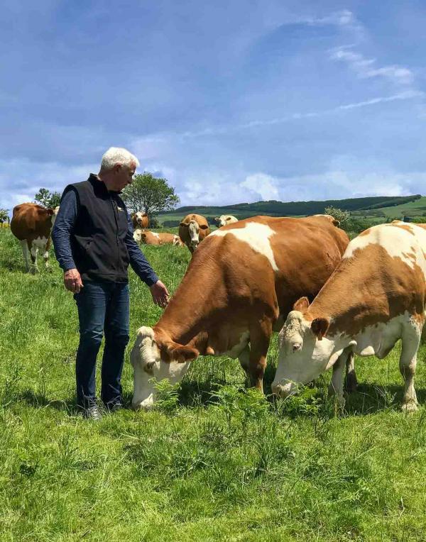 Jeune Montagne Gilbert Cestrières Vaches Simmental Fromage Laguiole AOP © Laure Anglade