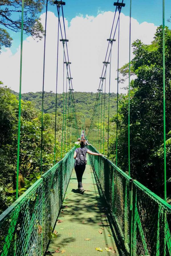 Puentes Colgantes de Monteverde - Les ponts flottants, en lévitation au niveau de la canopée © DR