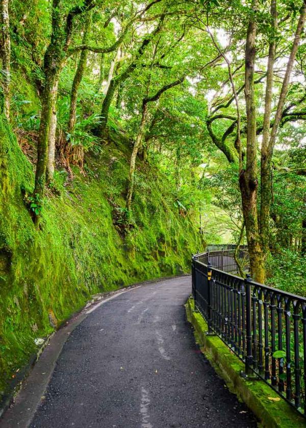 Lugard Road, un lieu de promenade incontournable sur les hauteurs d'Old Town Central © lkun – stock.adobe.com
