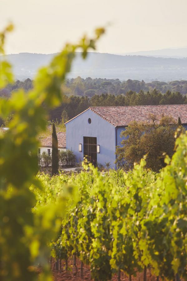Ultimate Provence | Chai © Francis Amiand