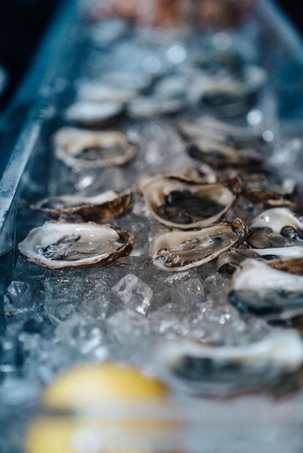 Plateau d'huîtres © Matthew Lejune