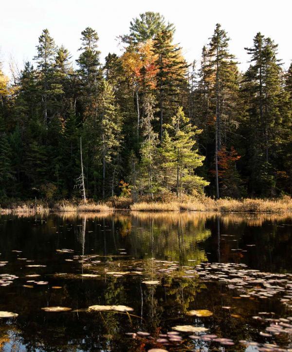 Québec — Lac © Caroline Mélia / YONDER.fr