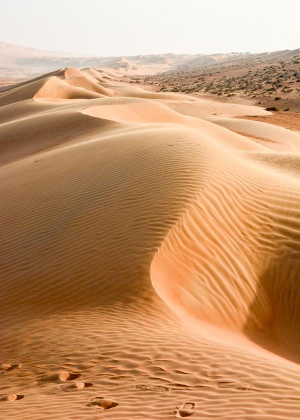 On a marché sur les dunes, à Oman. © Emmanuel Laveran.