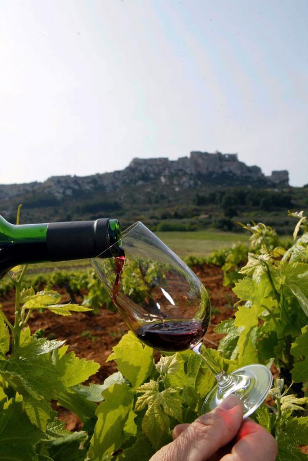 Dégustation dans les vignes des Alpilles © DR