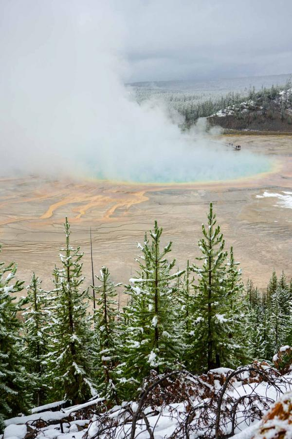 Le très coloré bassin de Grand Prismastic Spring vu depuis le sentier Fairy Fall Trail© YONDER.fr