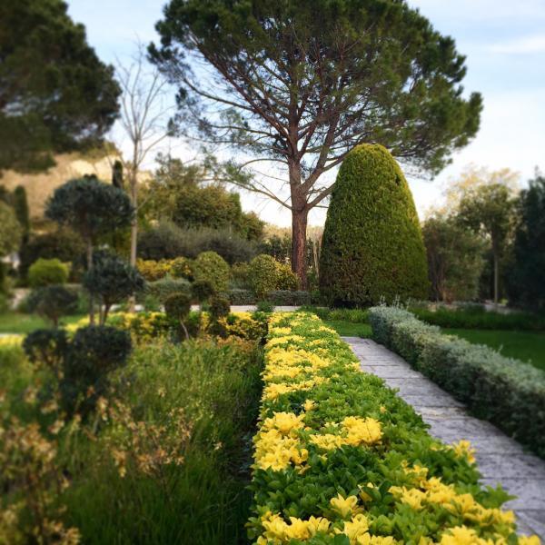 Les jardins fleuris de Baumanière | © Yonder.fr