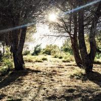 Coucher de soleil sur la collinne de La-Croix-des-Gardes © Yonder.fr