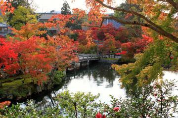 Kyoto en automne | © Aurélie Morin