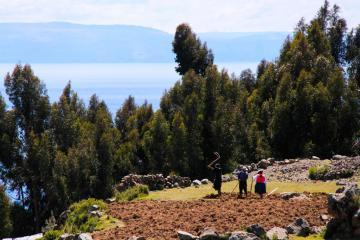 Travail de la terre sur les hautes collines d'Amantani. | © Cédric Aubert