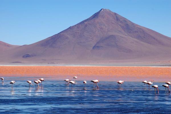 Laguna Colorada © David Brickman