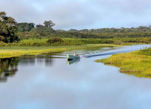 À la pointe du tourisme vert la Guyane ? Recouverte par l'immensité de la forêt amazonienne, refuge de 40% de la biodiversité française et comptant de nombreux camps où jouer les aventuriers le temps de quelques jours, découverte d'une destination méconnue et pourtant accessible à tous.