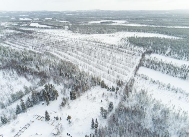 Paysages d'hiver en Laponie finlandaise.